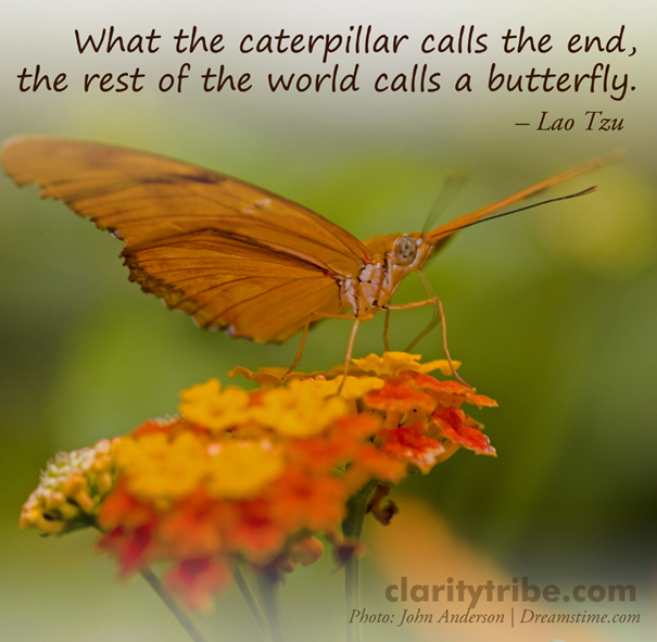 What the caterpillar calls the end, the rest of the world calls a butterfly.