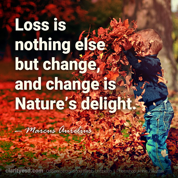 Loss is nothing else but change, and change is Nature's delight.