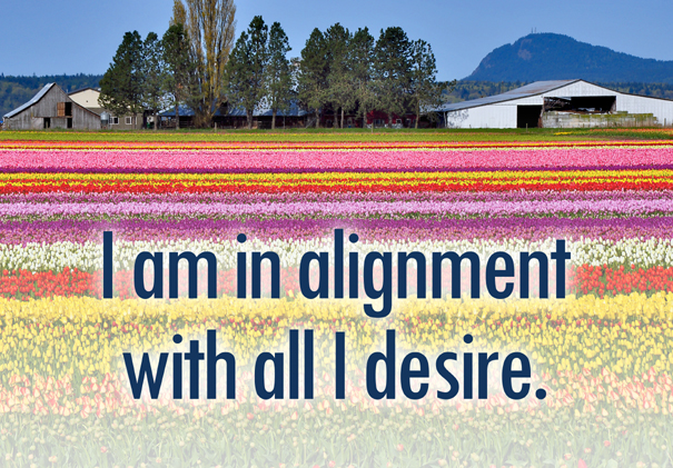 I am in alignment with all I desire